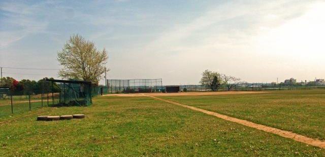 芝生の野球グランド