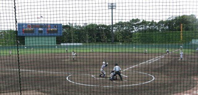 野球の観戦風景