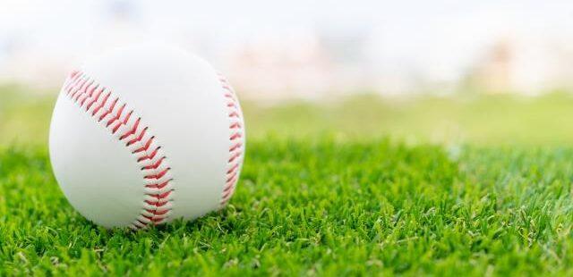 芝生とボール